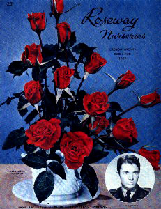 Audie Murphy Rose poster, Artifact #997-069-079, provided by the American Cotton Museum, Greenville, Texas.